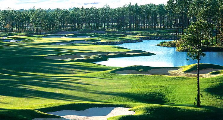 Ocean Ridge Golf - Tiger's Eye