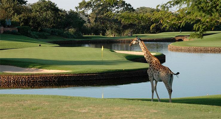 Leopark Creek Golf Course