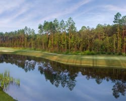 Jacksonville St Augustine-Golf tour-Amelia National Golf Country Club-Daily Rate