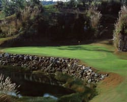 Nature Coast Golf Trail- GOLF outing-Brooksville Country Club