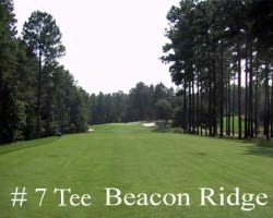 Sandhills-Golf excursion-Beacon Ridge Golf amp Country Club-Daily Rate