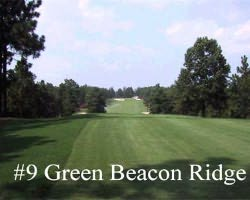 Sandhills- GOLF tour-Beacon Ridge Golf amp Country Club