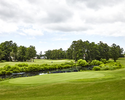Williamsburg- GOLF expedition-Ford s Colony - Blue Heron Course-Daily Rate