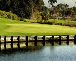Fort Lauderdale- GOLF tour-The Club at Emerald Hills-Daily Rate
