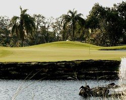 Fort Lauderdale- GOLF trip-The Club at Emerald Hills-Daily Rate