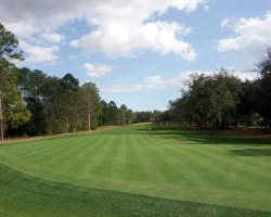 Jacksonville St Augustine- GOLF trek-Champions Club at Julington Creek-Daily Rates