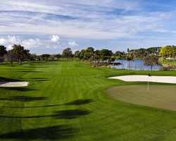 PGA National Resort- GOLF trek-PGA National - The Champion Course-Daily Rate
