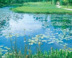 Golf Vacation Package - Coosaw Creek