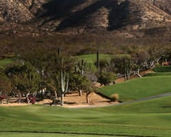 Cabo San Lucas- GOLF weekend-Cabo Real Golf Club-Daily Rate