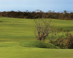 Cabo San Lucas-Golf excursion-Cabo Real Golf Club-Daily Rate
