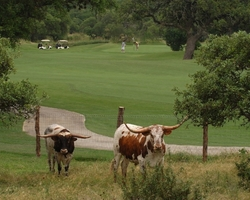 San Antonio-Golf weekend-Canyon Springs Golf Club-Daily Rate