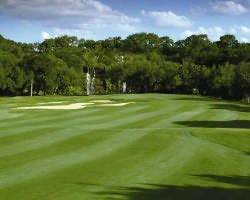 San Antonio-Golf trek-Canyon Springs Golf Club-Daily Rate