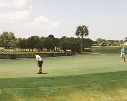 Tampa St Petersburg- GOLF excursion-Carrollwood Country Club - Cypress Course