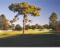 Orlando-Golf expedition-Debary Golf And Country Club-Daily Rate