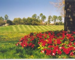 Orlando-Golf holiday-Debary Golf And Country Club-Daily Rate