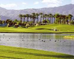 Palm Springs- GOLF excursion-Desert Falls-Green Fee incl Cart