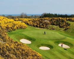 Dublin and East-Golf excursion-Druids Heath