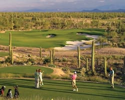 Tucson-Golf trek-The Golf Club at Dove Mountain-Daily Rate