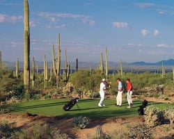 Tucson-Golf expedition-The Golf Club at Dove Mountain-Daily Rate