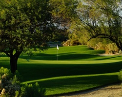 Palm Springs- GOLF trip-Desert Willow - Mountainview-Daily Rate