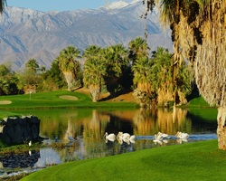 Palm Springs-Golf weekend-Desert Willow - Mountainview