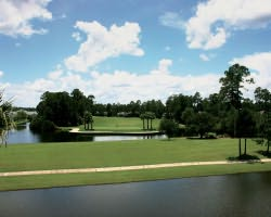 Jacksonville St Augustine-Golf excursion-Eagle Harbor Golf Club-Daily Rate