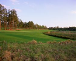 Pinehurst- GOLF trek-Pinehurst No 8