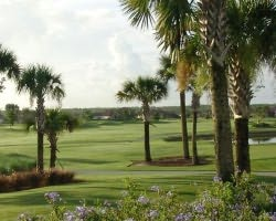 Naples Fort Myers-Golf excursion-Eagle Lakes Golf Club