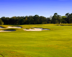 Tampa St Petersburg- GOLF travel-Fox Hollow Golf Club