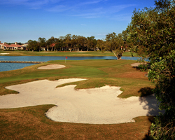 Tampa St Petersburg- GOLF excursion-Fox Hollow Golf Club