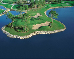 Naples Fort Myers-Golf trek-Lely Flamingo Island Club-Daily Rate