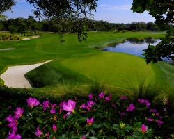 Orlando-Golf outing-Grand Cypress-North South East-Daily Rate