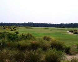 Orlando-Golf tour-Grand Cypress-New Course-Daily Rate