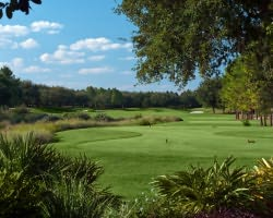 Orlando-Golf excursion-Golden Bear Golf Club at Keene s Pointe-Daily Rate