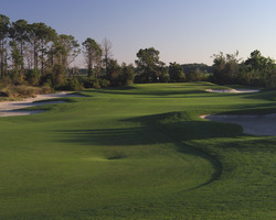 Orlando- GOLF weekend-Harmony Golf Preserve-Daily Rate