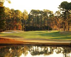 Hilton Head- GOLF tour-Hilton Head National-Daily Rates