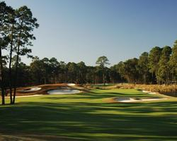 Hilton Head- GOLF travel-Hilton Head National-Daily Rates