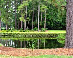 Hilton Head- GOLF holiday-Hilton Head National-Daily Rates