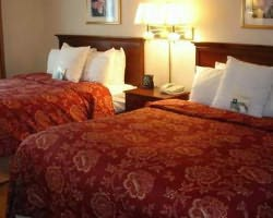 Williamsburg- LODGING trek-Homewood Suites by Hilton