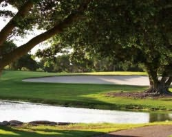 Tampa St Petersburg-Golf outing-Longboat Key Club Resort - Islandside Course-Daily Rate