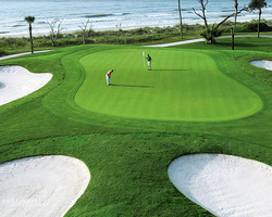 Hilton Head- GOLF tour-Palmetto Dunes - Jones
