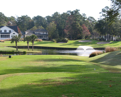 Myrtle Beach- GOLF weekend-Sea Trail Plantation amp Golf - Jones Course-Daily Rate