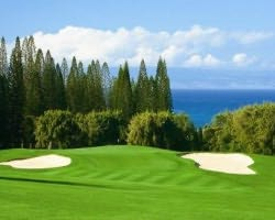 Maui- GOLF trip-Kapalua - Bay-Green Fee incl Cart Mid Morning 11 03am-12 51pm