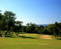 Maui-Golf expedition-Kapalua - Plantation-Green Fee incl Cart Mid Morning 11 00am-12 50pm