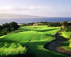 Maui-Golf excursion-Kapalua - Plantation-Green Fee incl Cart Mid Morning 11 00am-12 50pm