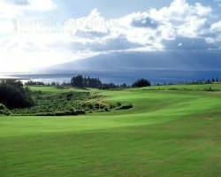 Maui-Golf vacation-Kapalua - Plantation-Green Fee incl Cart Mid Morning 11 00am-12 50pm