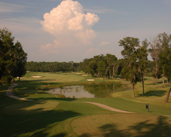 Nature Coast Golf Trail- GOLF travel-Lake Jovita Golf Club - South Course