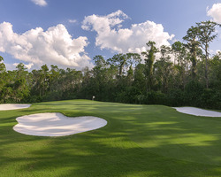 Orlando-Golf holiday-Disney Lake Buena Vista-Daily Rate