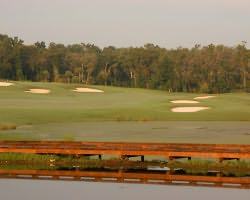 Nature Coast Golf Trail- GOLF excursion-Lake Jovita Golf Club - North Course