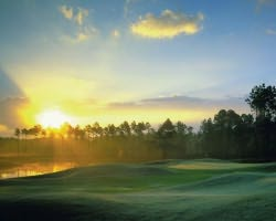 Daytona- GOLF outing-LPGA International - Hills Course-Daily Rate